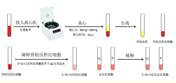 血型卡检测样品处理图.jpg